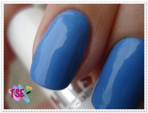 blueberry02