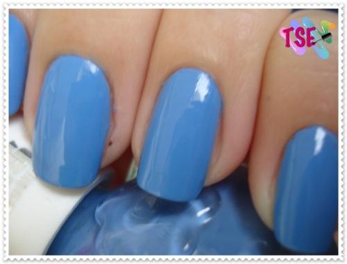 blueberry04