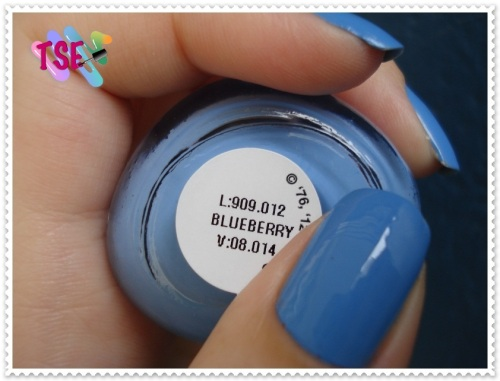 blueberry05