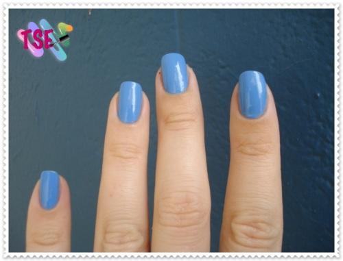 blueberry08